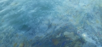 யாழ்.சுன்னாகம் நிலத்தடி நீரை குடிப்பதற்கு பயன்படுத்தலாமா..? பொதுமக்கள் கேள்விக்கு அறுதியான பதில் வழக்க மறுக்கும் நீர் வழங்கல் வடிகாலமைப்பு சபை..