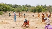 விவேக் நினைவாக 500 மரக்கன்றுகள் நடப்பட்டன!!